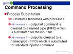 command processing1