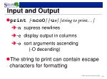 input and output2