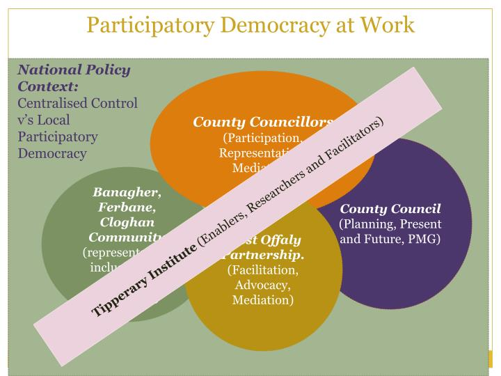 Participatory Democracy at Work