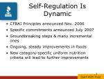 self regulation is dynamic