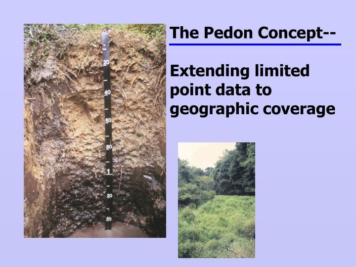 The Pedon Concept--