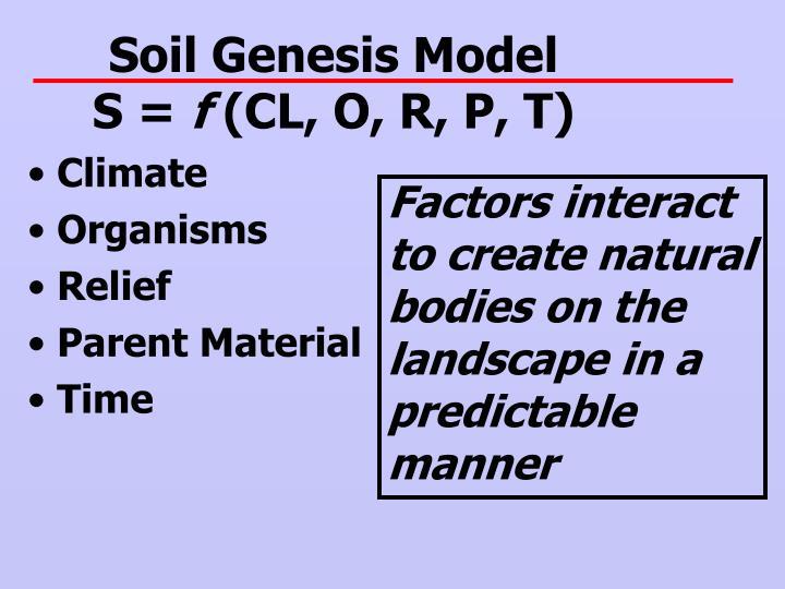 Soil Genesis Model