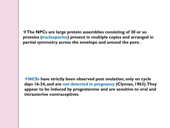 The NPCs are large protein assemblies consisting of 30 or so proteins (