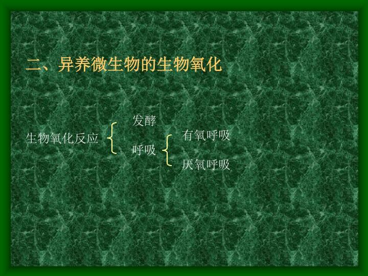 二、异养微生物的生物氧化