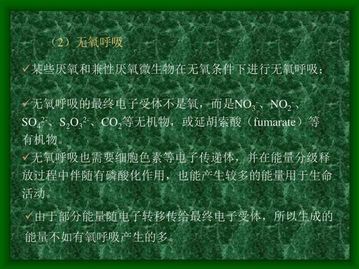 (2)无氧呼吸