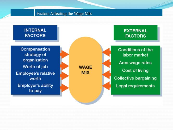 Factors Affecting the Wage Mix
