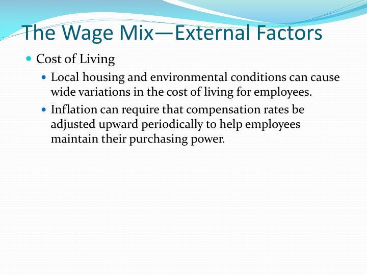 The Wage Mix—External Factors