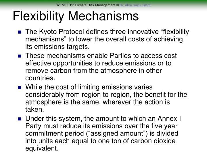 Flexibility Mechanisms