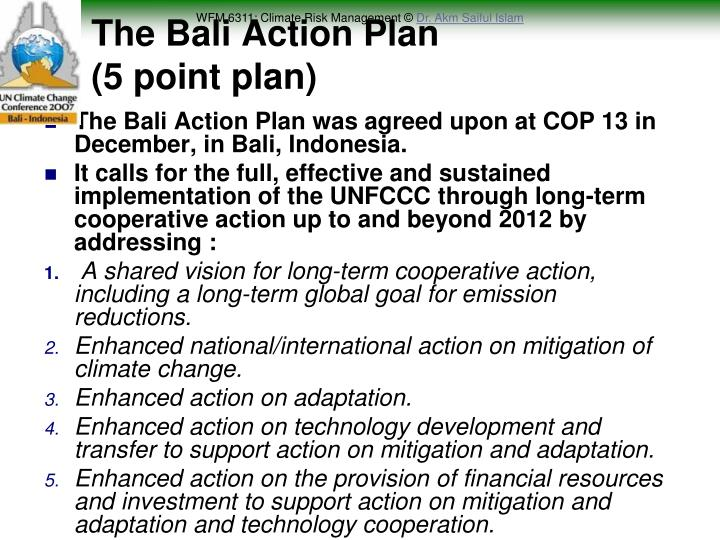 The Bali Action Plan