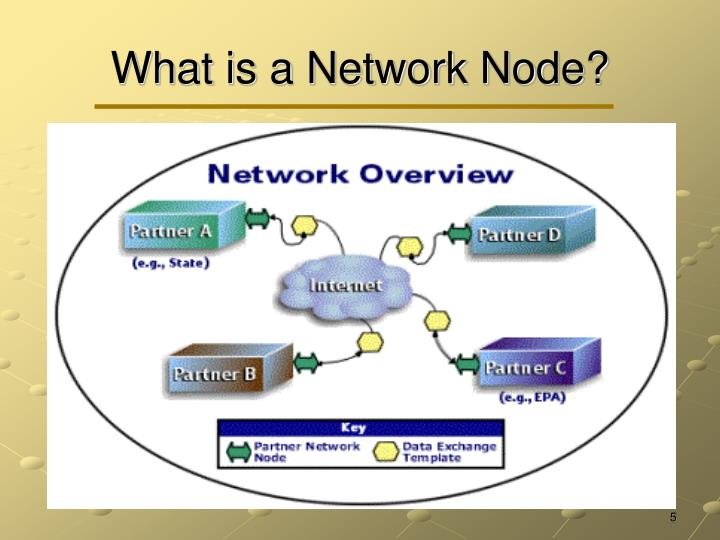 What is a Network Node?
