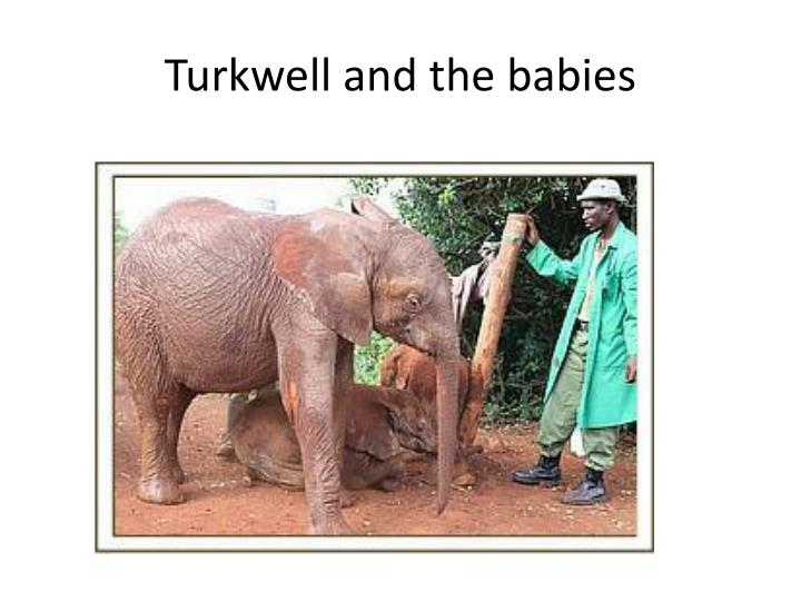 Turkwell and the babies