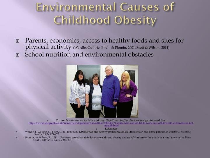 Environmental Causes of Childhood Obesity