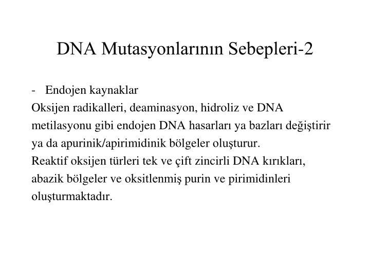 DNA Mutasyonlarının Sebepleri-2