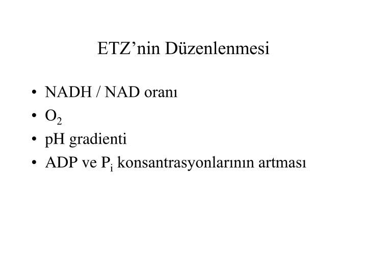 ETZ'nin Düzenlenmesi