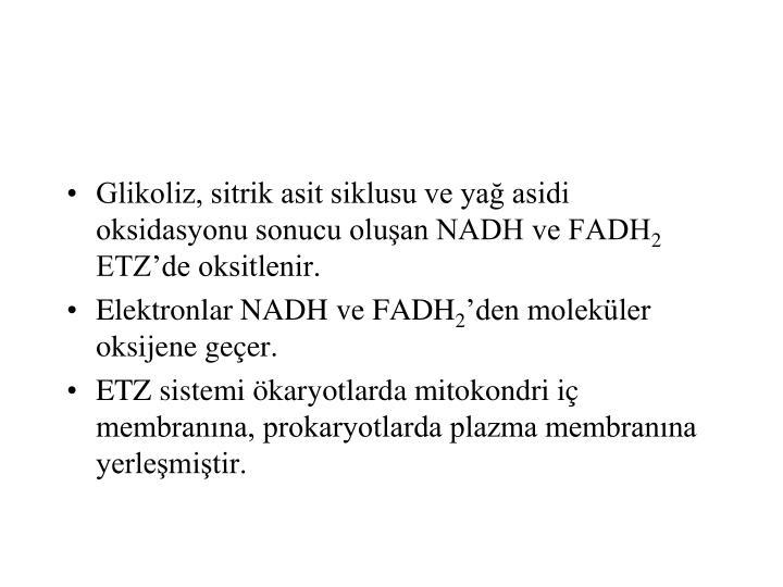 Glikoliz, sitrik asit siklusu ve yağ asidi oksidasyonu sonucu oluşan NADH ve FADH