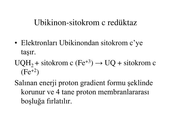 Ubikinon-sitokrom c redüktaz