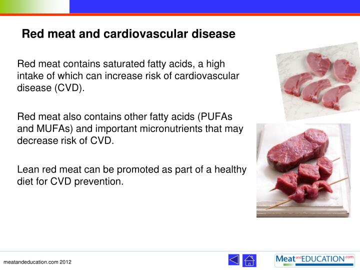 Red meat and cardiovascular disease