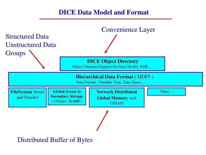 DICE Data Model and Format