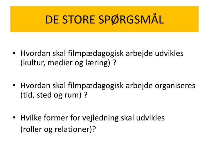 DE STORE SPØRGSMÅL
