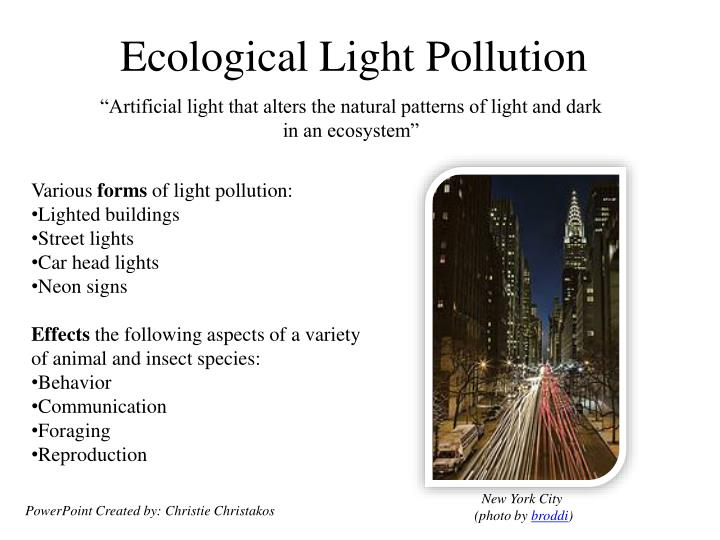 the effects of light and dark areas For the first time, the effects on complete plants are now described in the the plant cell journal the plants developed in the dark as if they were in light, says the director of the.