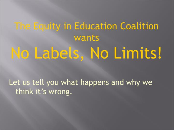The Equity in Education Coalition wants