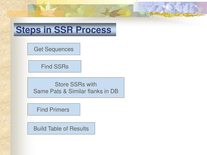Steps in SSR Process
