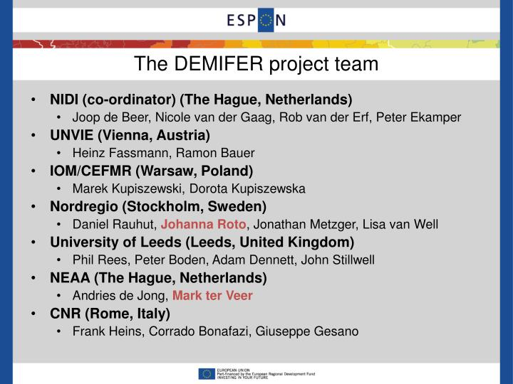 The demifer project team