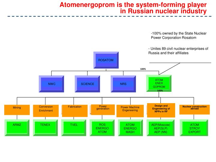 Atomenergoprom is the system-forming player