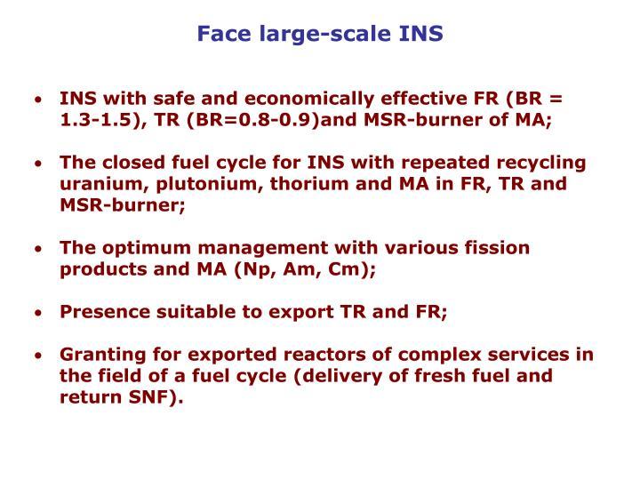 Face large-scale INS