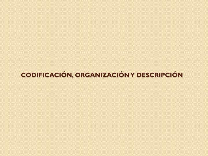 Codificación, organización y descripción