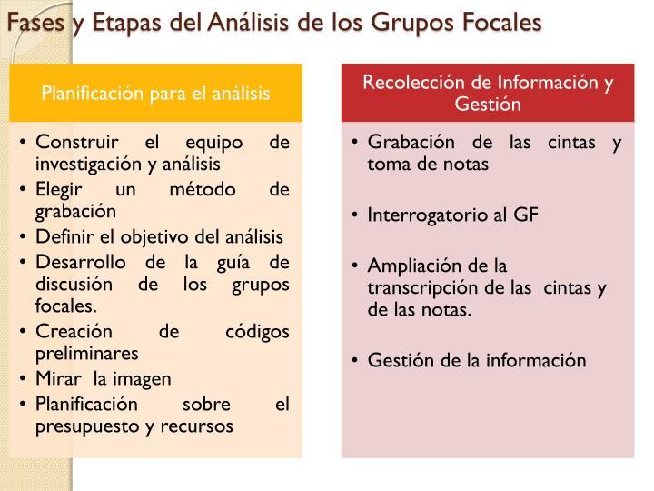 Fases y Etapas del Análisis de los Grupos Focales