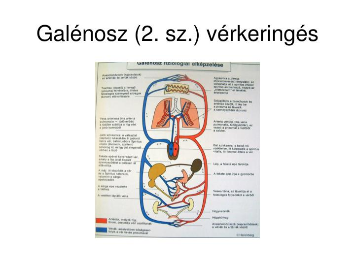Galénosz (2. sz.) vérkeringés