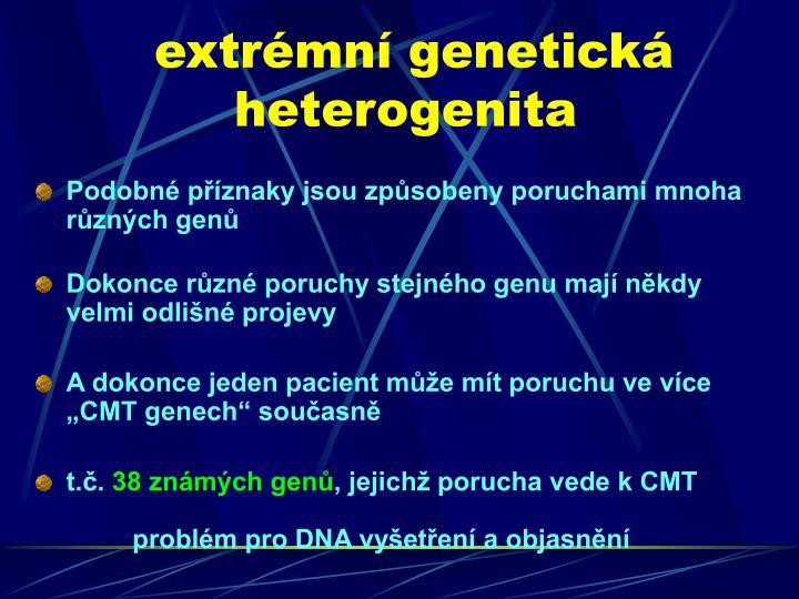 extrémní genetická heterogenita
