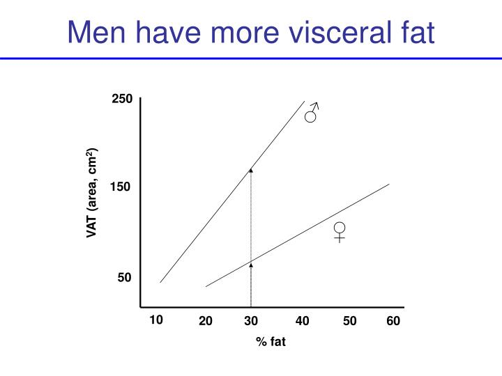 Men have more visceral fat