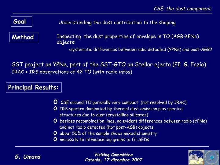 CSE: the dust component