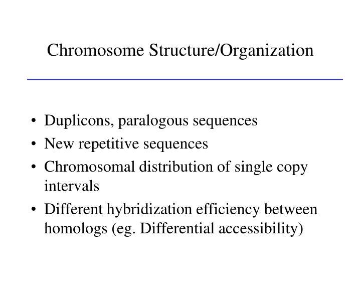 Chromosome Structure/Organization