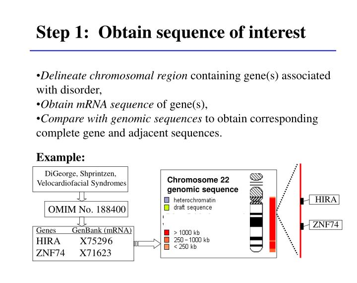 Step 1:  Obtain sequence of interest