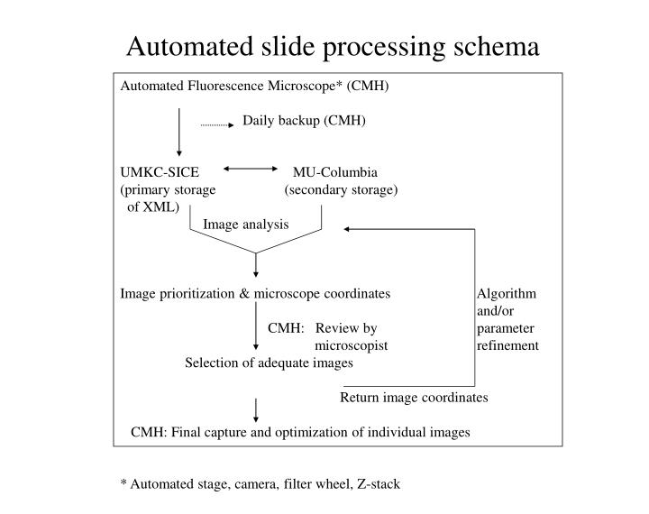 Automated slide processing schema