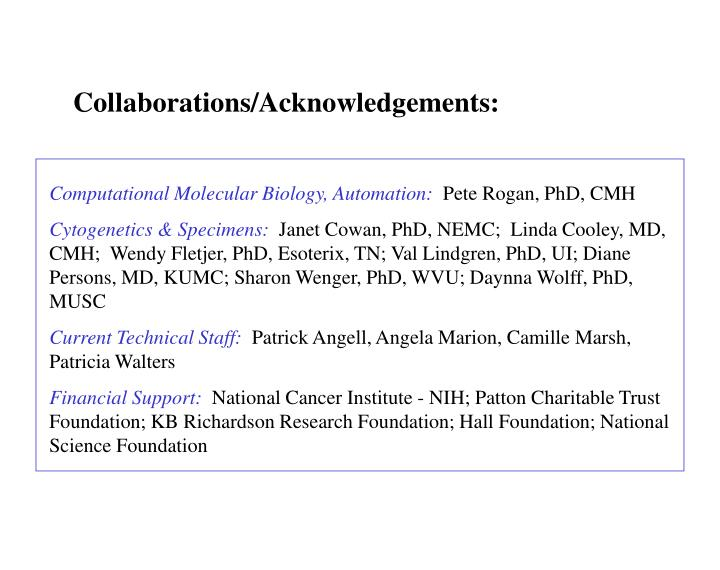 Collaborations/Acknowledgements: