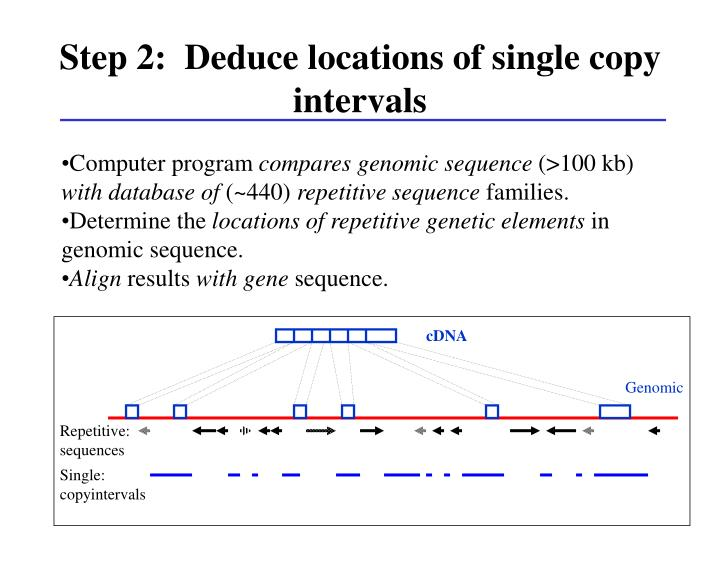 Step 2:  Deduce locations of single copy intervals