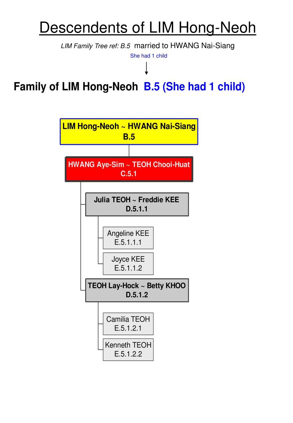 Descendents Of Lim Hong Neoh Family Tree Ref B 5 Married To Hwang Nai Siang