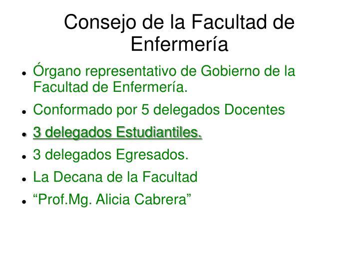 Consejo de la Facultad de Enfermería