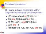 various expressions the name includes preposition and or conjunction ambiguity of dependencies
