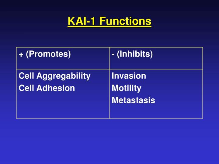 KAI-1 Functions