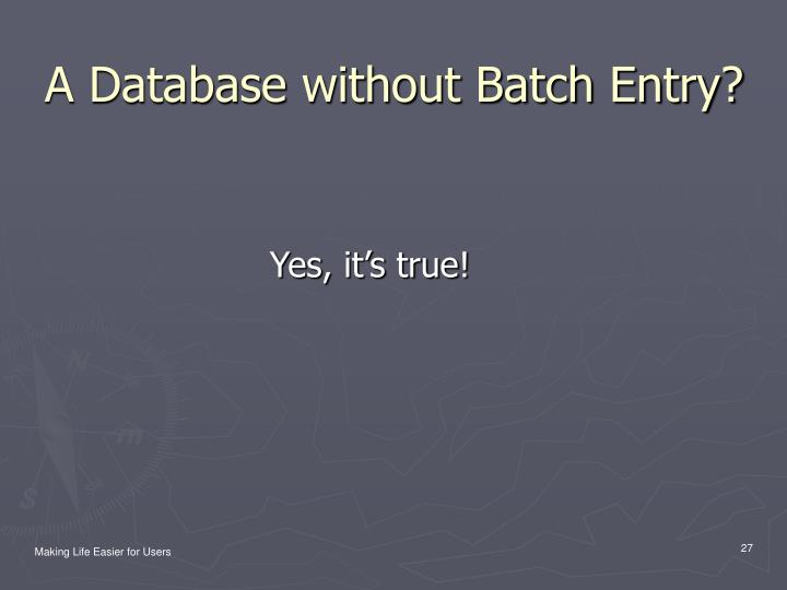 A Database without Batch Entry?