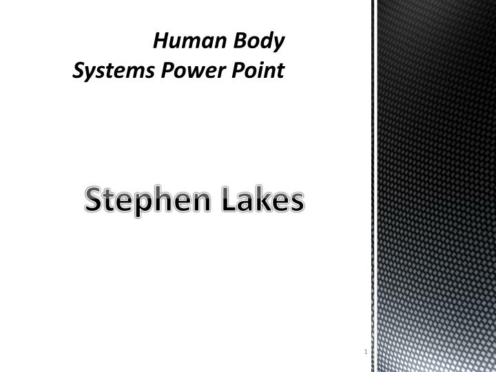 human body systems power point n.