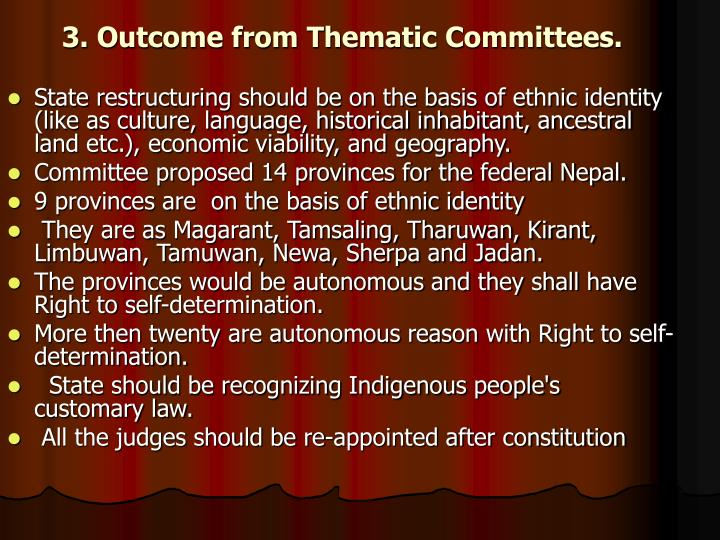3. Outcome from Thematic Committees.