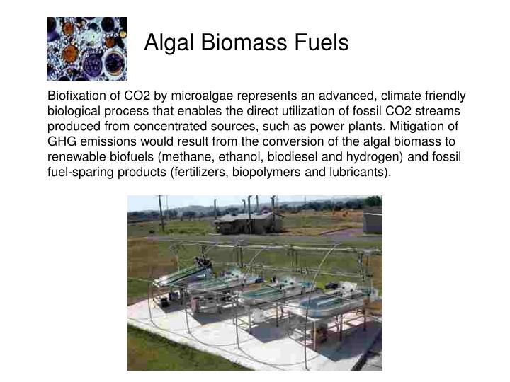 Algal Biomass Fuels