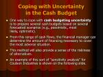 coping with uncertainty in the cash budget