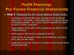 profit planning pro forma financial statements10